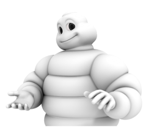 Sign Up to Ask The Michelin Man